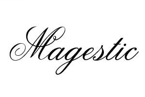 Espace Magestic Centre